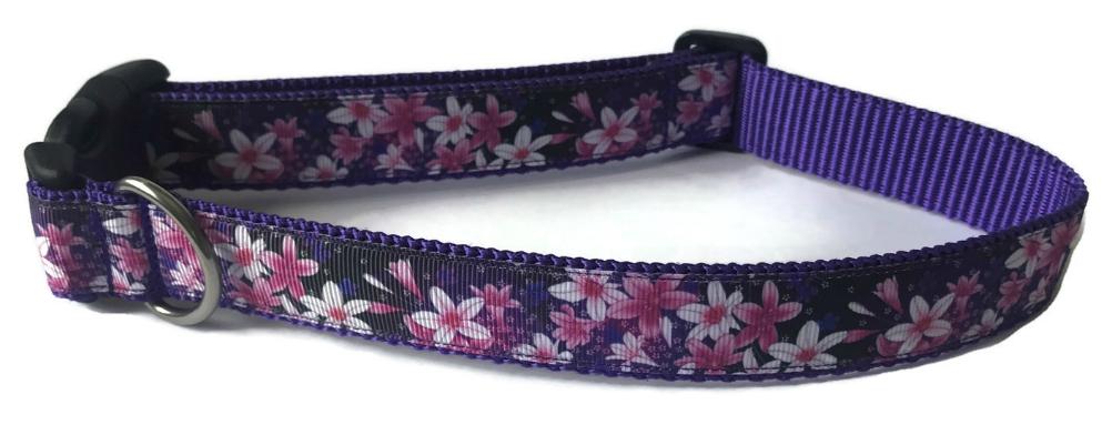Purple Pink72