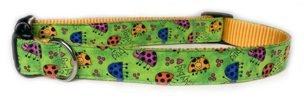 Ladybug Love72